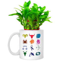 Fast-Growing Lucky Bamboo Tree designed in Sunsign Mug