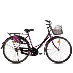 Vanity Fair BSA Ladybird Dreamz (Junior) Bicycle