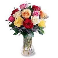 Touching Seasons Greetings 12 Mixed Roses in a Vase