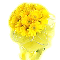 Unique Yellow Coloured Gerberas Arrangement