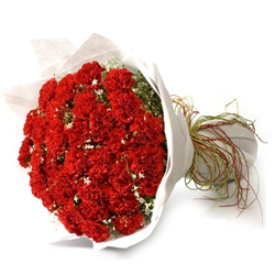 Good Looking Bouquet of Red Carnations