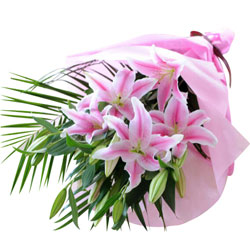 Beautiful Pink Lilies Bouquet wrapped in a Tissue