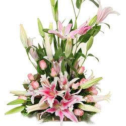 Lovely Arrangement of Pink Roses with Pink Lilies