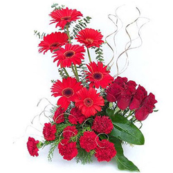 Majestic Table Top Arrangement of Carnations, Roses nd Gerberas