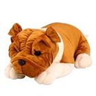 Big Bulldog to Dwarka