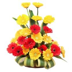 Brilliant 20 Colorful Gerberas Bouquet with Affection