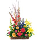 Multicolored Seasonal Flowers Arrangement of Good Wishes to G T B Hospital