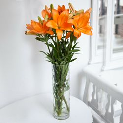 Fashionable Vase Filled with 6 Pcs. Mixed Lilies to Mundela Kalan