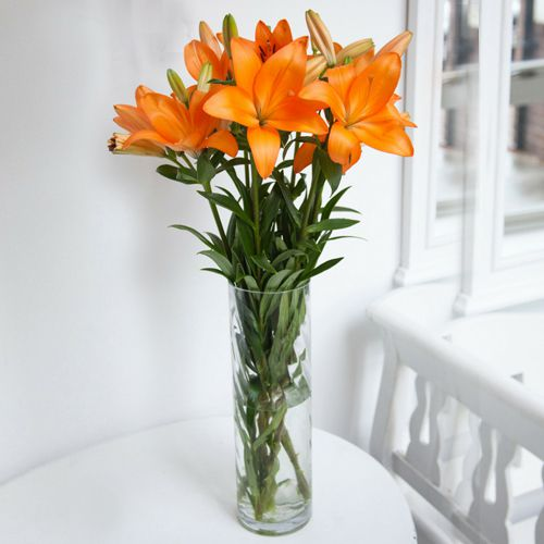 Book Mixed Lilies in a Vase Online