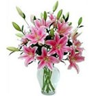 Expressive Lilies in Pink Color with Vase to Palam Airport