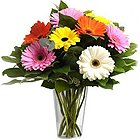 A Glass Vase full of MIxed Gerberas to Zakir Nagar