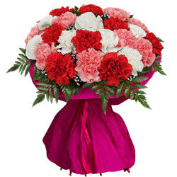 Shop Bouquet of Mixed Carnations Online