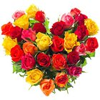 Gorgeous Hearty Assortment of 30 Mixed Roses
