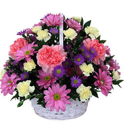 Gift Basket of Roses N Carnations Online
