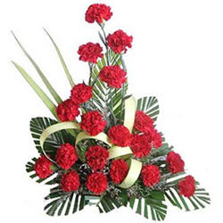 Buy Online Red Carnations Arrangement