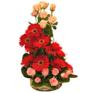 Beating Sentiments Roses and Gerberas Special Arrangement