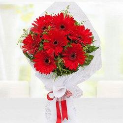 Precious Bloom Red Gerberas Bouquet