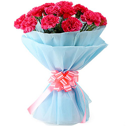 Order Online Bouquet of Pink Carnations