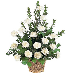 Shop Online Basket of White Carnations