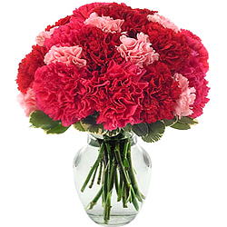 Online Order Pink N Red Carnations with Glass Vase