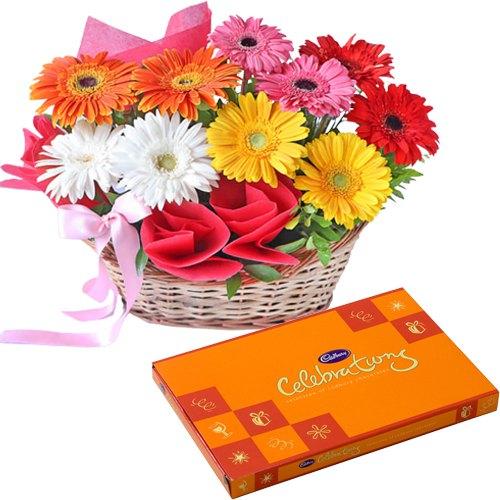 Buy Gerberas Basket N Cadbury Celebration Online