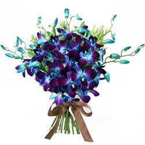Buy Bouquet of Orchids Stems Online