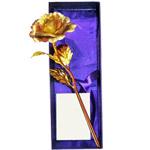 Special Love Golden Rose Stick