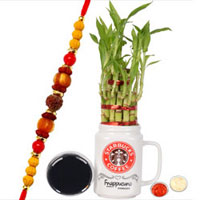 Attractive Combo of Rudraksh Rakhi with Bamboo Plant, Message Card N Roli Tika N Chawal