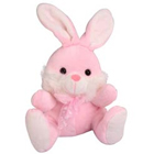 Cute Rabbit Soft Toy to Palam Airport