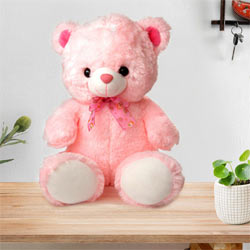 Big Teddy Bear to Rohini