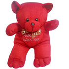 Beautiful Valentine Special Love Teddy